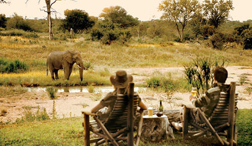game viewing from your doorstep at Motswari