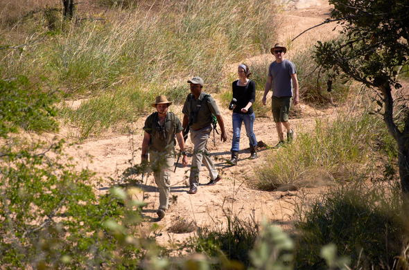Guests on a guided bush walk in the game reserve.